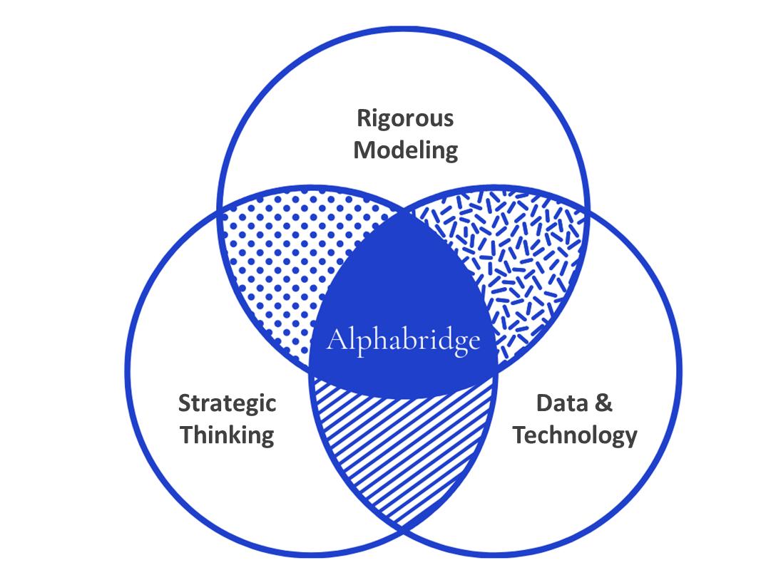 Alphabridge - What We Do